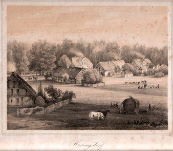 Heringsdorf, Die alte Wilhelmstraße, D0163-5