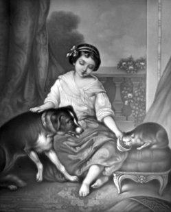 HPM 111 – Hund und Katze