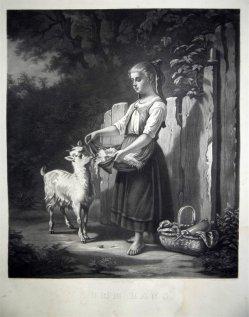 Hermann Droehmer (1820-1890), Lithographie, Komm Hans, nach H. Werner um 1847, D1346