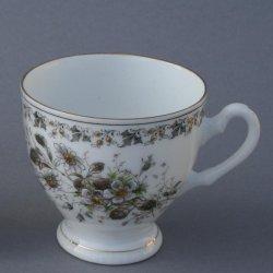 Buckauer Porzellanmanufaktur, Tasse und Untertasse um 1885, D0683-155-10